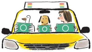 korea_driving-licence