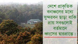 Gazipur Forest